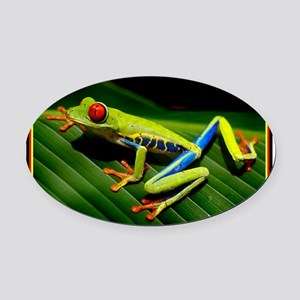 Exotic Tree Frog Oval Car Magnet