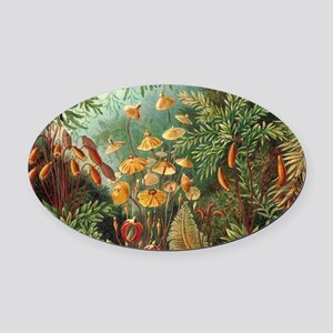 Vintage Plants Decorative Oval Car Magnet