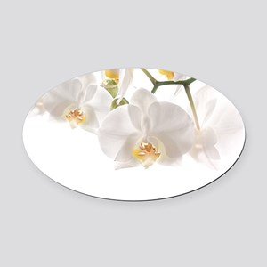 Orchids Reflection Oval Car Magnet
