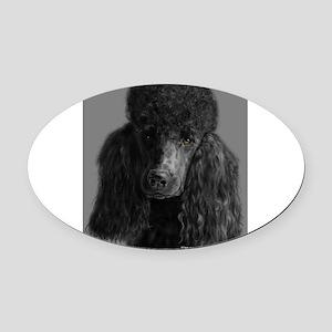 standard poodle black Oval Car Magnet