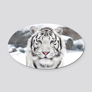 White Tiger Oval Car Magnet