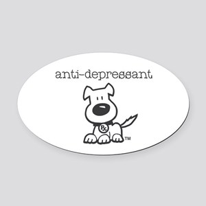 Anti Depressant Oval Car Magnet
