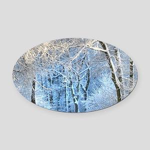 Another Winter Wonderland Oval Car Magnet