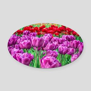 Tulip Field Oval Car Magnet