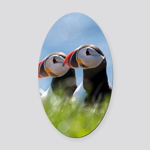 Puffin Pair 7.355x9.45 Oval Car Magnet