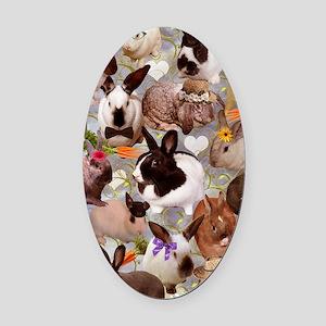 Happy Bunnies Oval Car Magnet