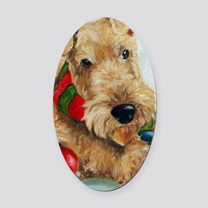 Ornaments Oval Car Magnet
