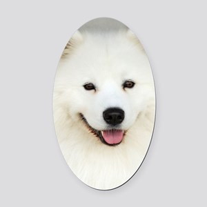 Samoyed 9Y566D-019 Oval Car Magnet