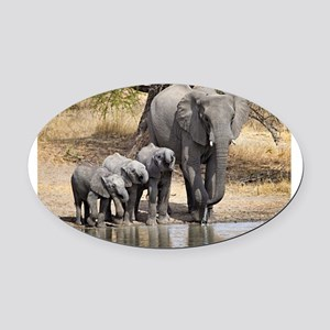 Elephant mom and babies Oval Car Magnet