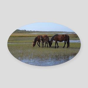 Shackleford Ponies Oval Car Magnet
