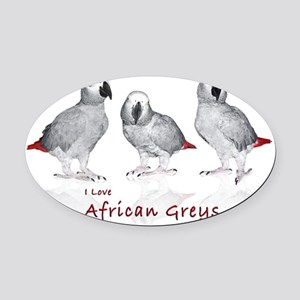 african grey parrots Oval Car Magnet