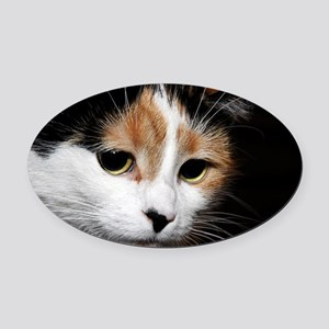 Calico Cat Chiara Oval Car Magnet