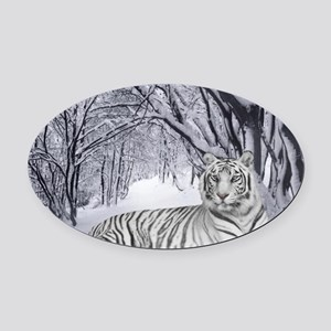 White Bengal Tiger Oval Car Magnet