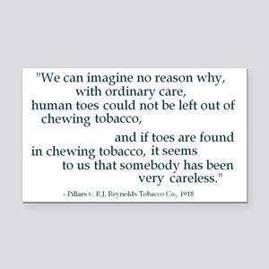 Ordinary Care Rectangle Car Magnet