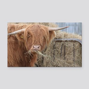 Cow with Hay Rectangle Car Magnet