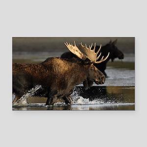 moose splashing in the water Rectangle Car Magnet