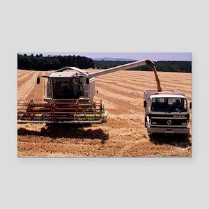 Wheat harvest - Car Magnet