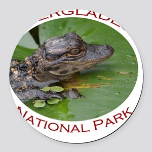 Everglades National Park...Baby A Round Car Magnet