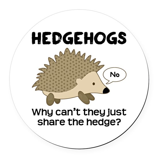 Hedgehog Pun