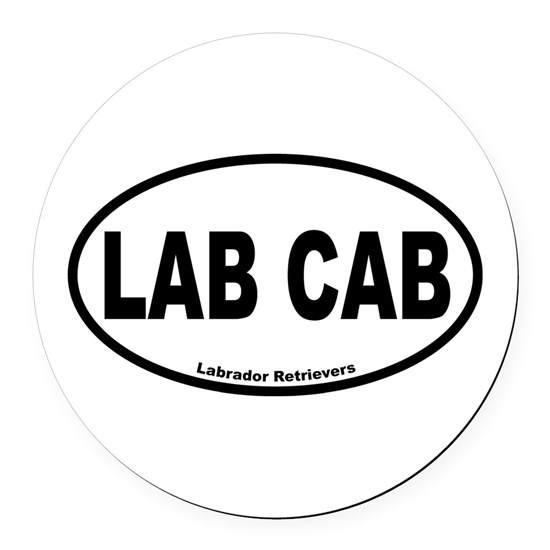 Lab Cab Oval