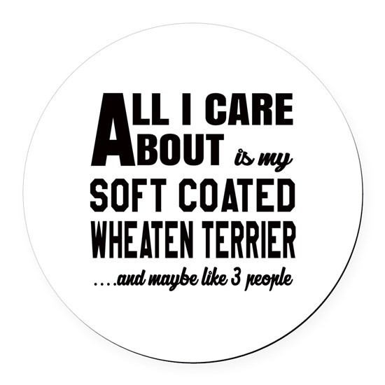 All I care about is my Soft Coated Wheaten Terrier