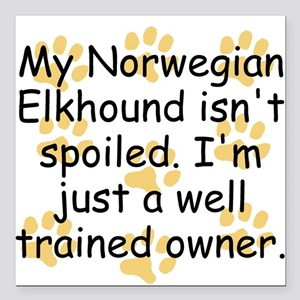 Well Trained Norwegian Elkhound Owner Square Car M