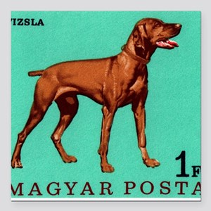 "1967 Hungary Vizsla Dog  Square Car Magnet 3"" x 3"""
