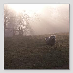 Babydoll Southdown Sheep Car Accessories - CafePress