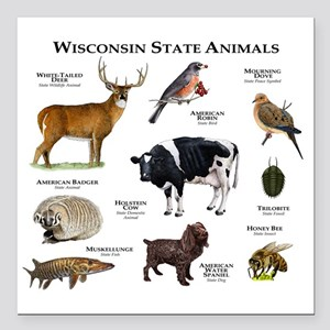 "Wisconsin State Animals Square Car Magnet 3"" x 3"""
