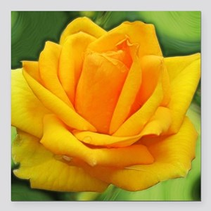 Yellow Rose Car Accessories - CafePress