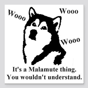 "Its a Malamute Thing.. Square Car Magnet 3"" x 3"""