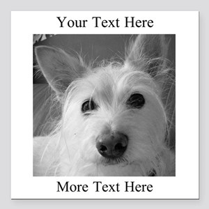 """Your Text and Your Photo Here Square Car Magnet 3"""""""