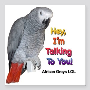 """Hey, I'm talking to you! LOL Square Car Magnet 3"""""""