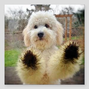 "Goldendoodle Puppy Dog Square Car Magnet 3"" x 3"""
