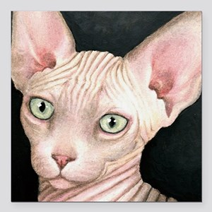 "Cat 412 sphynx Square Car Magnet 3"" x 3"""