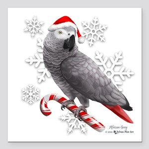 """Christmas African Grey P Square Car Magnet 3"""" x 3"""""""