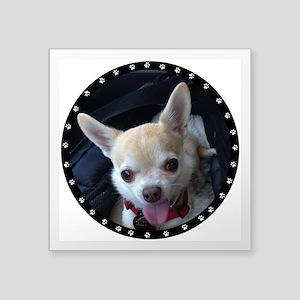 "Personalized Paw Print Square Sticker 3"" x 3"""
