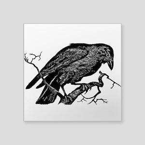 Vintage Raven in Tree Illustration Square Sticker