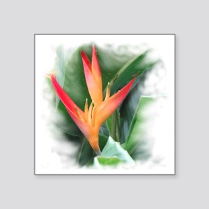 "Bird of Paradise Square Sticker 3"" x 3"""