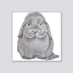 Holland Lop by Karla Hetzler Sticker