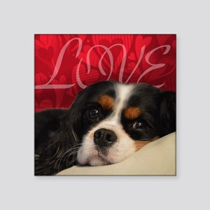 "Cavalier King charles Spani Square Sticker 3"" x 3"""