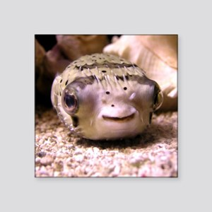 Helaine's Blowfish (Pufferfish ) Square Sticker 3""