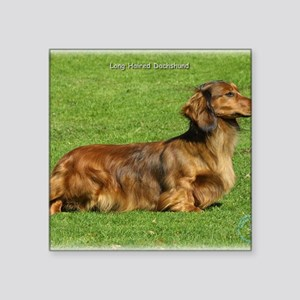 "Dachshund 8R020D-05 Square Sticker 3"" x 3"""