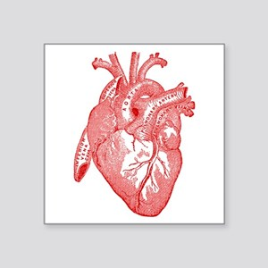 Anatomical Heart - Red Sticker