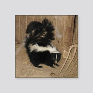 "Baby Skunk Square Sticker 3"" x 3"""