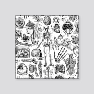 "anatomy_W_twin_duvet Square Sticker 3"" x 3"""