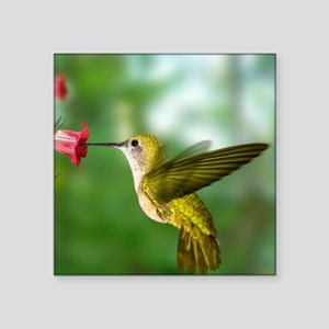 "Hummingbird in flight Square Sticker 3"" x 3"""