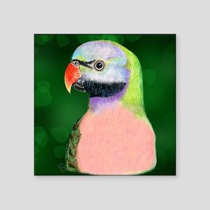 Moustache Parakeet Gifts - CafePress