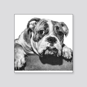 bulldog-3 no background dry brush Square Stick