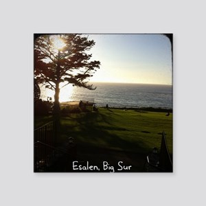"Front lawn at Esalen, Big Sur Square Sticker 3"" x"